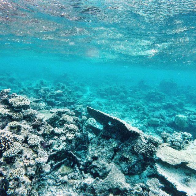 Find Me under de sea Fiji PeeptoesTravels