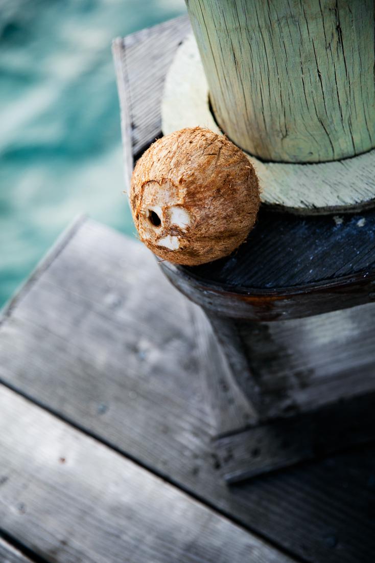 billabong-wetsuit-coconuts-beach-samoa-8